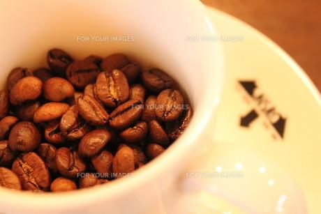 コーヒーの素材 [FYI00168492]