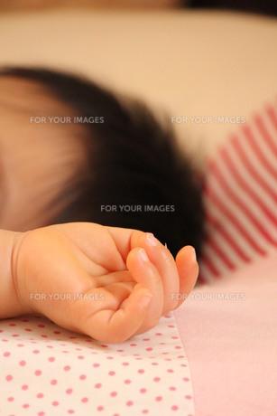 小さな手の素材 [FYI00168524]