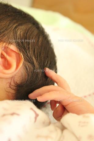 赤ちゃんの手の素材 [FYI00168552]