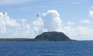 カツオドリと硫黄島の写真素材 [FYI00168605]