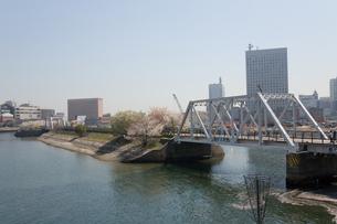 横浜みなとみらいの汽車道の写真素材 [FYI00168622]