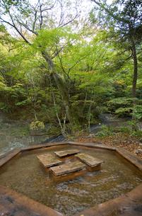 緑の中の不動乃足湯の写真素材 [FYI00168717]