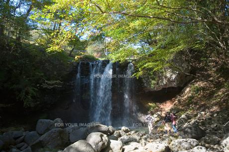 那須塩原 乙女の滝の素材 [FYI00168721]