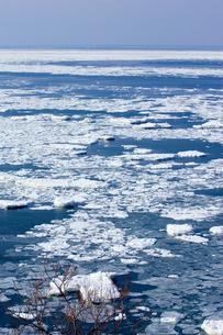 オホーツクの流氷の素材 [FYI00168798]