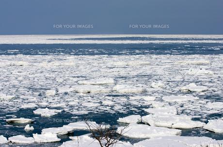 オホーツクの流氷の素材 [FYI00168813]