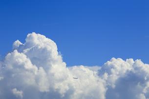 青空と入道雲の素材 [FYI00168846]