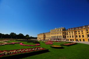 ウィーンのシェーンブルン宮殿の写真素材 [FYI00168882]