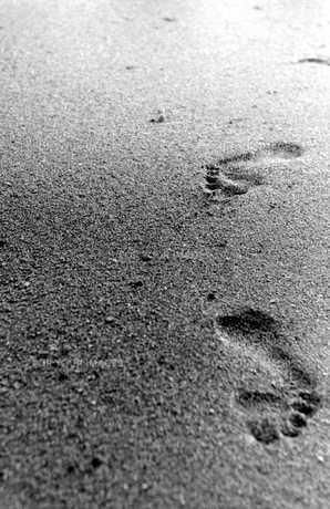 足跡の写真素材 [FYI00168960]