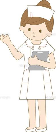 看護師 全身 案内の写真素材 [FYI00169047]