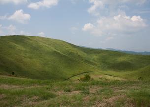 大室山の緑の写真素材 [FYI00169084]
