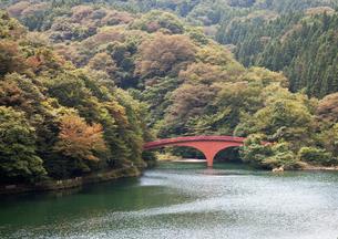 湖にかかる赤い橋の写真素材 [FYI00169086]
