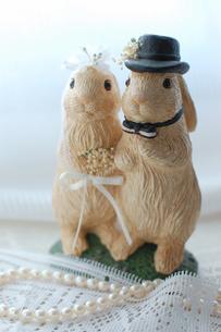 うさぎの結婚式の写真素材 [FYI00169252]