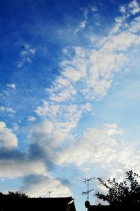 夏の終わりの空と雲の写真素材 [FYI00169372]