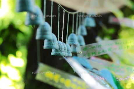 森に響く風鈴の音色が聴こえるの写真素材 [FYI00169379]