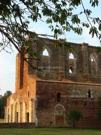 イタリアのサン・ガルガーノ修道院の素材 [FYI00169414]