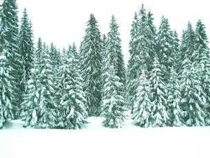 北イタリア雪景色の写真素材 [FYI00169457]