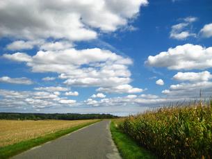 フランスの田園風景の素材 [FYI00169518]