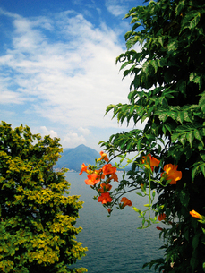 マッジョーレ湖/ベッラ島の素材 [FYI00169563]