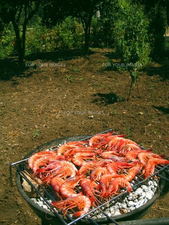 Italian Seafoodsの素材 [FYI00169572]