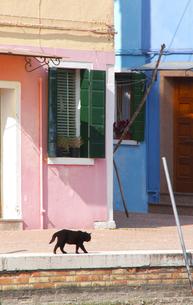 ブラーノ島の色彩の素材 [FYI00169605]