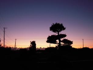 一年の夜明けの写真素材 [FYI00169723]
