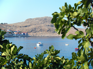 ギリシャ・ハルキ島の町並みの写真素材 [FYI00169793]