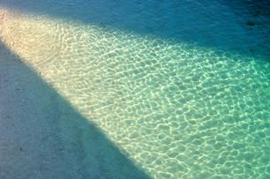 エメラルドグリーンのビーチの素材 [FYI00169868]
