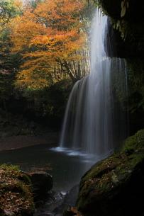 秋の鍋ヶ滝(縦構図)の写真素材 [FYI00169926]