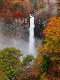 紅葉の華厳の滝の写真素材 [FYI00169979]