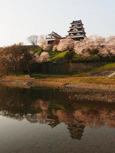 桜咲く大洲城の写真素材 [FYI00170015]