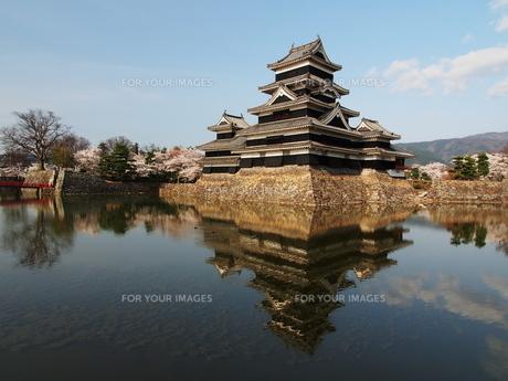 桜咲く松本城の写真素材 [FYI00170019]