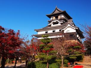 紅葉の犬山城の写真素材 [FYI00170020]