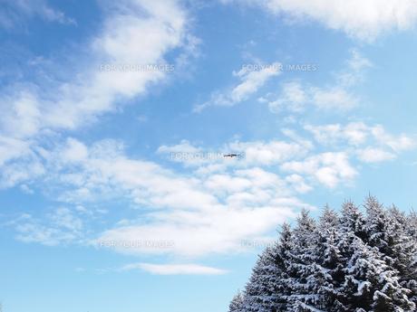 冬の青空の写真素材 [FYI00171110]
