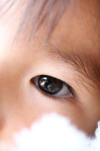 子供の瞳の写真素材 [FYI00171254]