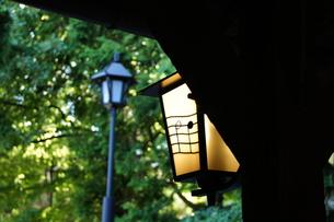 街灯の写真素材 [FYI00171329]