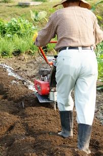 畑仕事をする男性の写真素材 [FYI00171475]