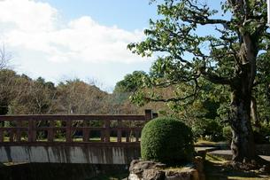 橋のある風景の写真素材 [FYI00171485]