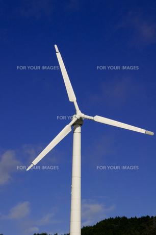 風車の写真素材 [FYI00171514]