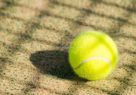 テニスボールの写真素材 [FYI00171543]