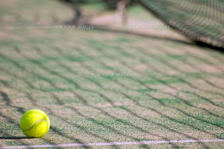 テニスボールの写真素材 [FYI00171552]