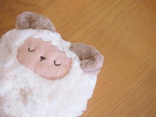 フローリングと羊のブランケットの写真素材 [FYI00171680]