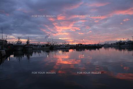 漁港の夜明けの写真素材 [FYI00171751]