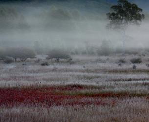 高原の初秋のひとときの写真素材 [FYI00171867]