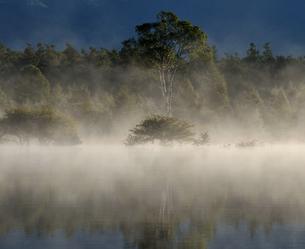 幻の湖に映える貴婦人の写真素材 [FYI00171896]