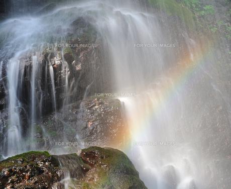 滝に映える虹の写真素材 [FYI00171901]