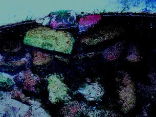 貯水池の中の石の写真素材 [FYI00172019]