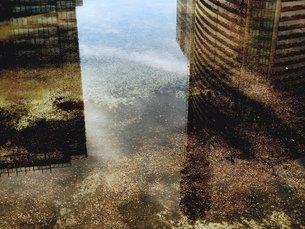 水に映る2棟のビルの素材 [FYI00172065]