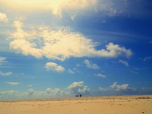 砂の島の素材 [FYI00172160]