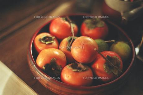 収穫した柿の写真素材 [FYI00172270]