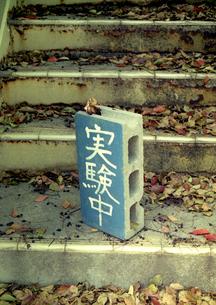 学校、実験中のブロックの写真素材 [FYI00172277]